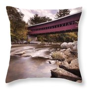 Crossing The Swift Throw Pillow