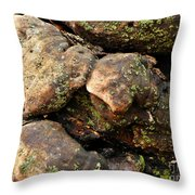 Crotchety Old Moss Covered Tree Man Throw Pillow