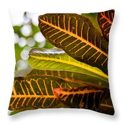 Croton Throw Pillow