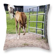 Crow Hopping Filly Throw Pillow