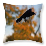 Crow In Flight 3 Throw Pillow
