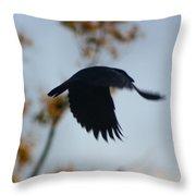 Crow In Flight 4 Throw Pillow