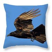 Crow In Flight Throw Pillow
