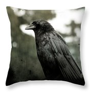 Crow In The Summer Rain Throw Pillow