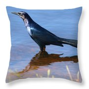 Crow In The Water Throw Pillow