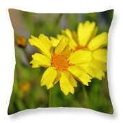 Crown Daisies  Throw Pillow