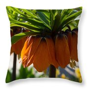 Crown Imperial Flowers Throw Pillow