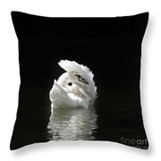 Crown Of Feathers IIi Throw Pillow