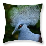 Crowned Pigeon Goura Cristata, Bali Throw Pillow