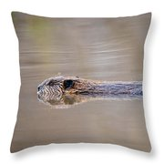 Cruisin' Beaver Throw Pillow