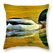 Cruisin Throw Pillow by Frozen in Time Fine Art Photography
