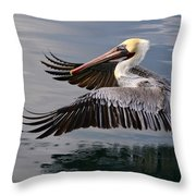 Cruising At Water Level 2 Throw Pillow