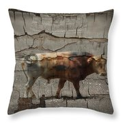 Crumbling Signage Painted Barn  Throw Pillow