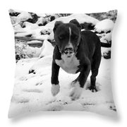 Crush Snow Run Throw Pillow