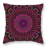 Crushed Pink Velvet Kaleidoscope Throw Pillow