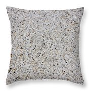 Crushed Shell Sidewalk Throw Pillow