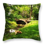 Cruz At Deer Creek Bridge Dwight Il Throw Pillow