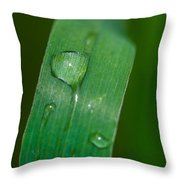 Crying Grass - Featured 2 Throw Pillow