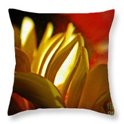 Crystal Ball Project 105 Throw Pillow