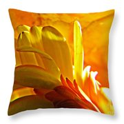 Crystal Ball Project 107 Throw Pillow