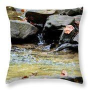 Crystal Clear Waters Of Hurricane Branch Throw Pillow