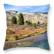 Crystal Creek In The Gros Ventre Throw Pillow