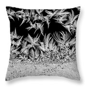Crystal Feathers Throw Pillow