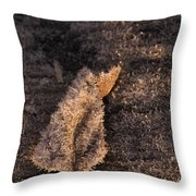 Crystal Leaf Throw Pillow by Anne Gilbert