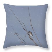 Crystal Mornings Throw Pillow