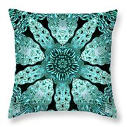 Crystal Perspective Throw Pillow