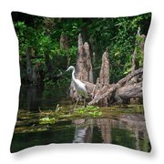 Crystal River Egret Throw Pillow