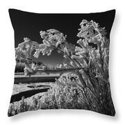 Crystalize Throw Pillow