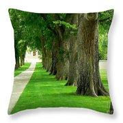 Csu Tree Path Throw Pillow