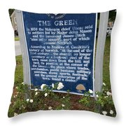 Ct-005 The Green Throw Pillow by Jason O Watson