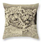 Cubs At Play Throw Pillow