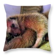 Cuddle Bugs Throw Pillow