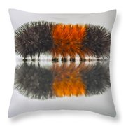Wooly Bear Throw Pillow
