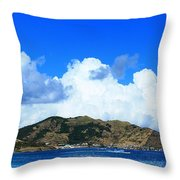 Cul-de-sac Throw Pillow