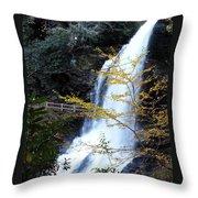 Cullasaja's Dry Falls Throw Pillow