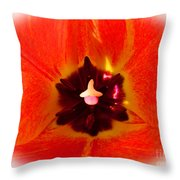 Cultivar Orange Tulip Throw Pillow
