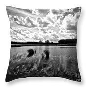 Cultivated Nature Throw Pillow