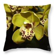 Cumbidium Orchid Throw Pillow