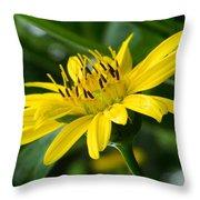 Cup Flower Throw Pillow