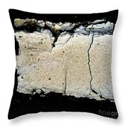 Curb Appeal One Throw Pillow