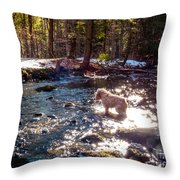 Curiosity In The Berkshires Throw Pillow