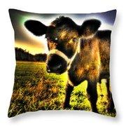 Curious Calf Dark Throw Pillow
