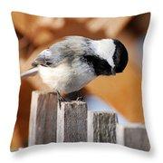 Curious Chickadee Throw Pillow