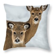 Curious Does Throw Pillow