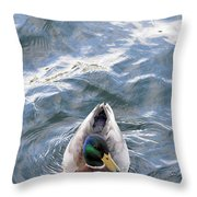Curious Duck Throw Pillow