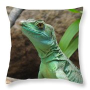 Curious Gaze Throw Pillow